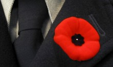 Poppy on black suit lapel